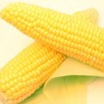 kukurydz-fructon